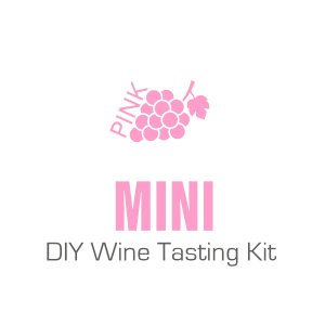 Mini Pink DIY Wine Tasting Kit