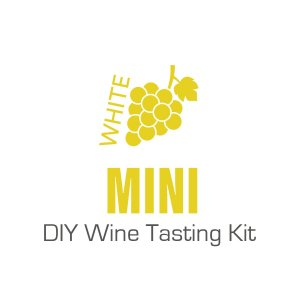 Mini White DIY Wine Tasting Kit